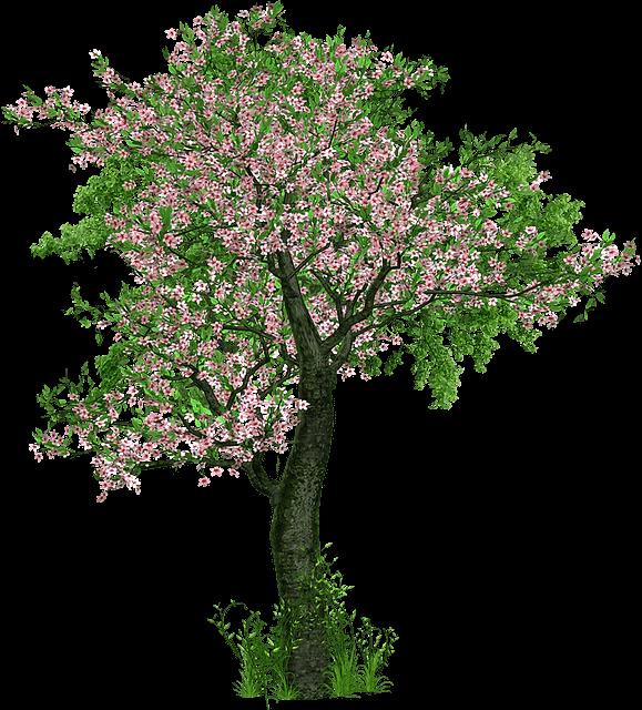 Stammbaum Laubbaum mit Blüten