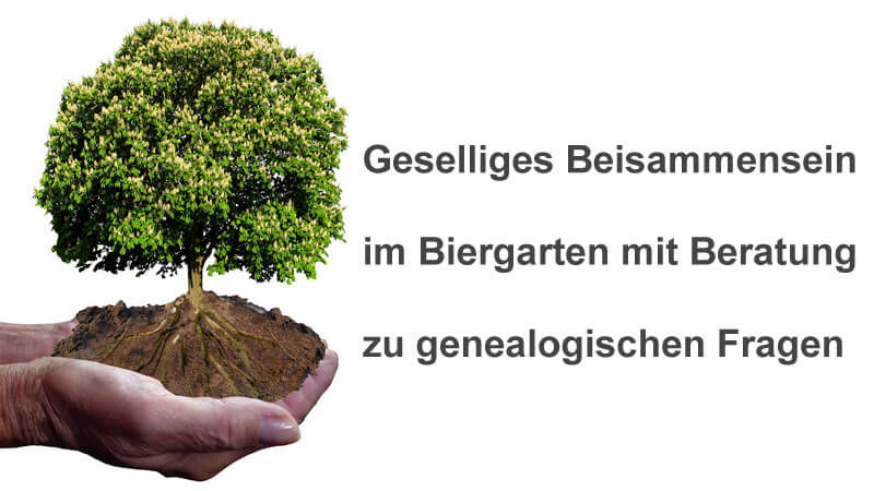 Biergarten Baum 800x450